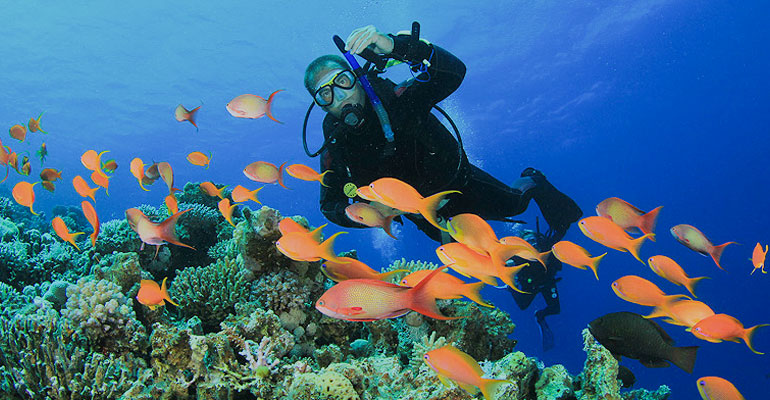 Dive Sites in Negombo
